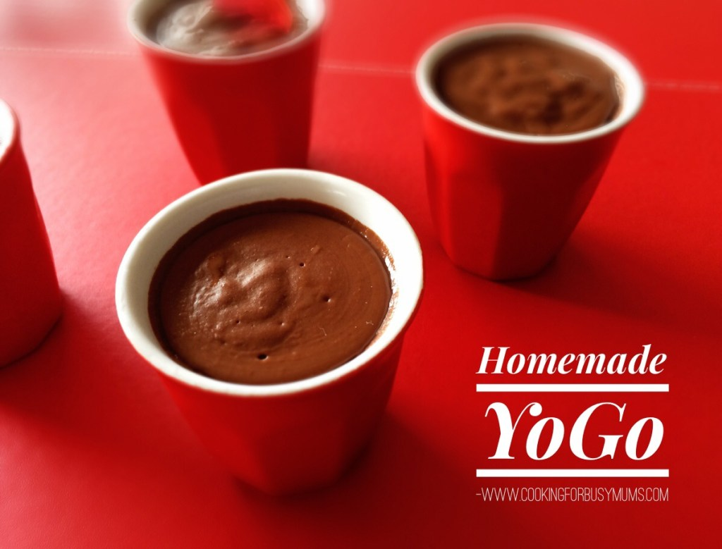 Homemade Chocolate Yogo