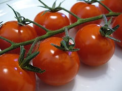 cherry tomatoes on the stem