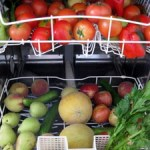 fresh produce loaded in dishwasher