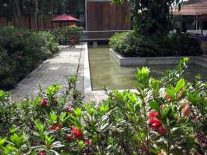 L-shaped pool in botanical garden