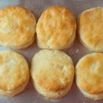 Flaky Biscuit top view