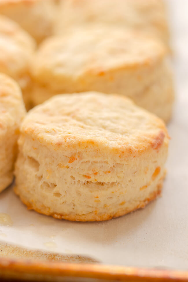 Buttermilk Parmesan Biscuits recipe is the perfect addition to any dinner or breakfast. A bit salty, a bit tangy and a whole lot of good. Make them today.