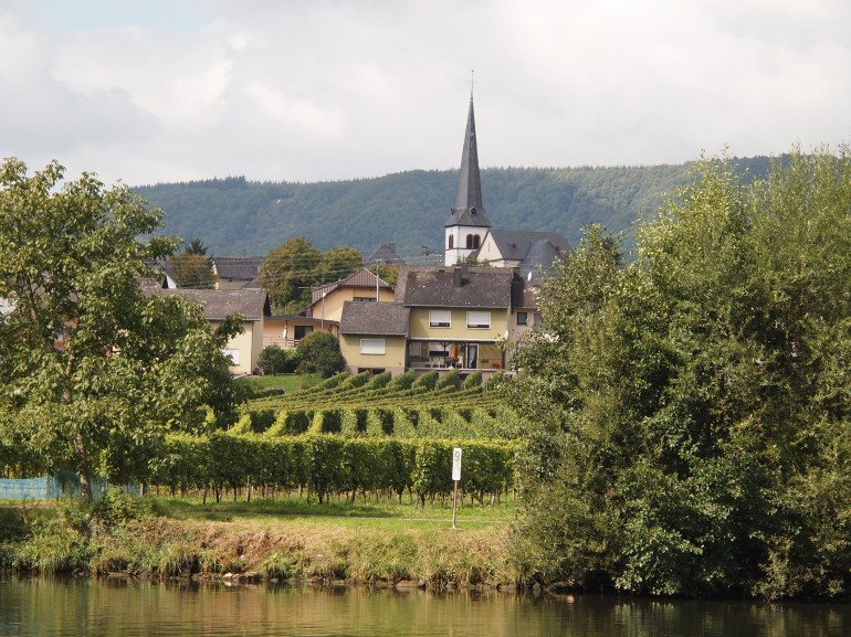 Churches and vineyards are everywhere along the Moselle River