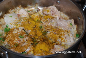 indian chicken curry (5)