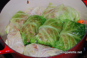 stuffed cabbage (28)