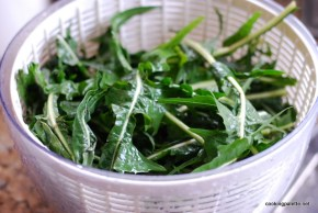 creamy dandelion with leek (2)