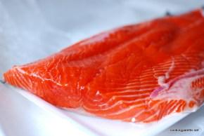 salmon crudo (1)