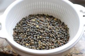 lentil salad (1)