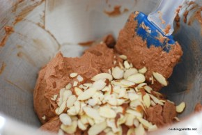chocolate gelato (4)