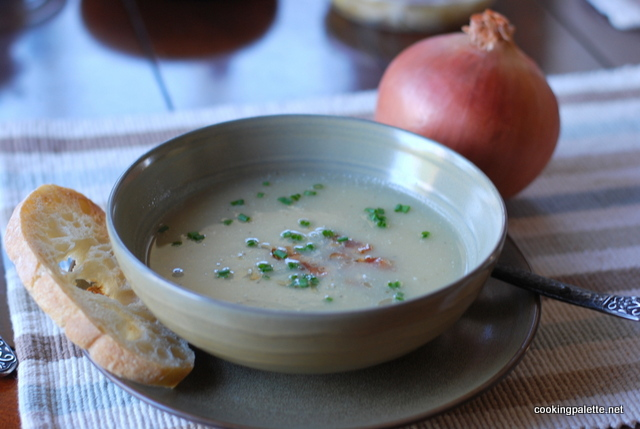 onion cream soup (14)