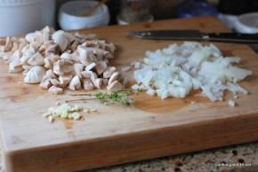mushroom ragout polenta medalions (1)