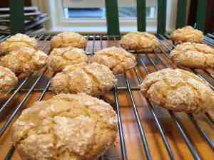 Cose-up of the baked Almond Cookies.