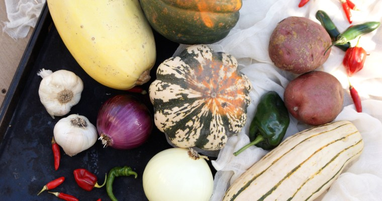 Harvest Bounty and The Casual Veggie