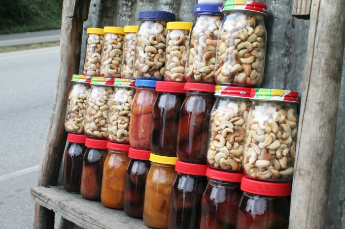 Cashews in the Dominican Republic 02