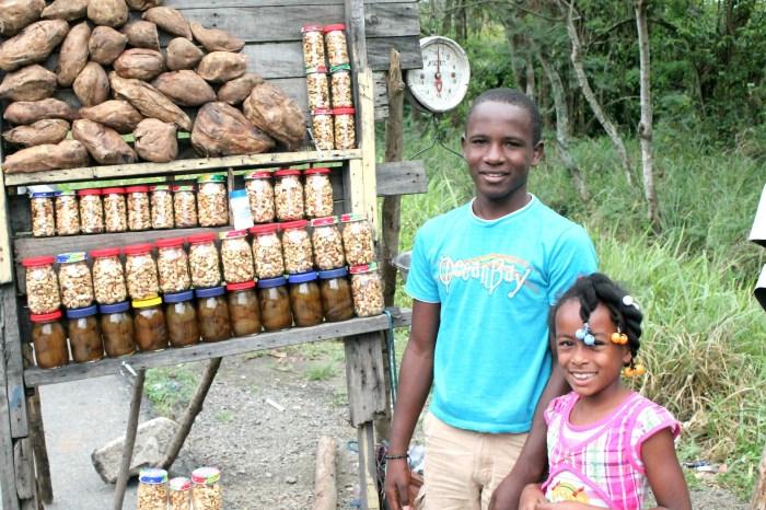 Cashews in the Dominican Republic
