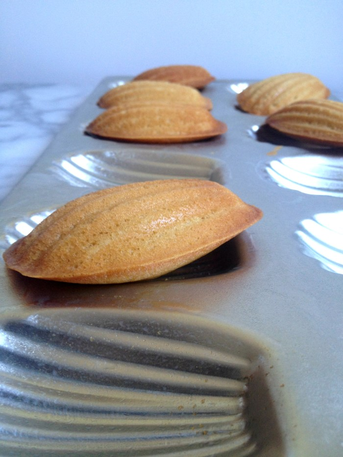 Lemon Madeleines 01