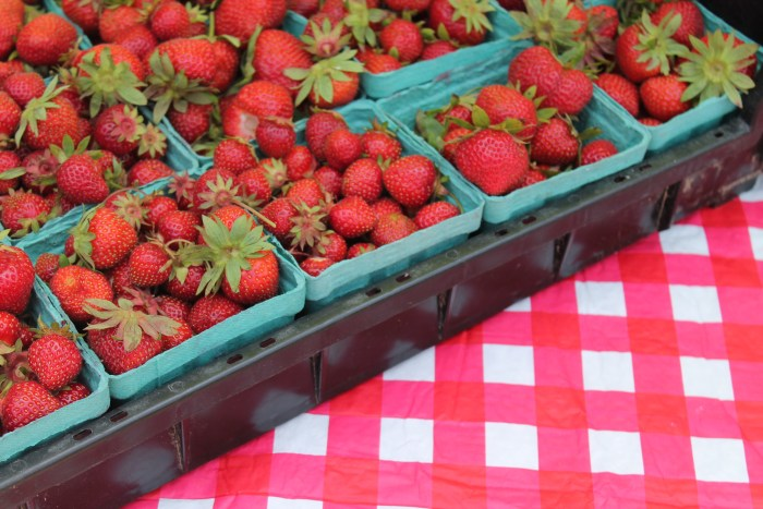 Martha's Vineyard Strawberry Festival 3