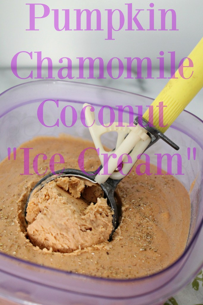 Pumpkin Chamomile Coconut Ice Cream 03