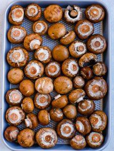 roasted muchrooms