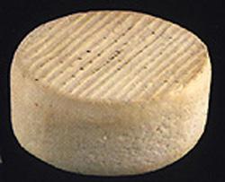 Queso De La Gomera Cheese Cooking Wiki