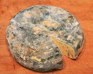Home Made Gorgonzola Cheese A Cheese Recipe