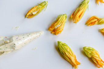 zucchiniblos-6