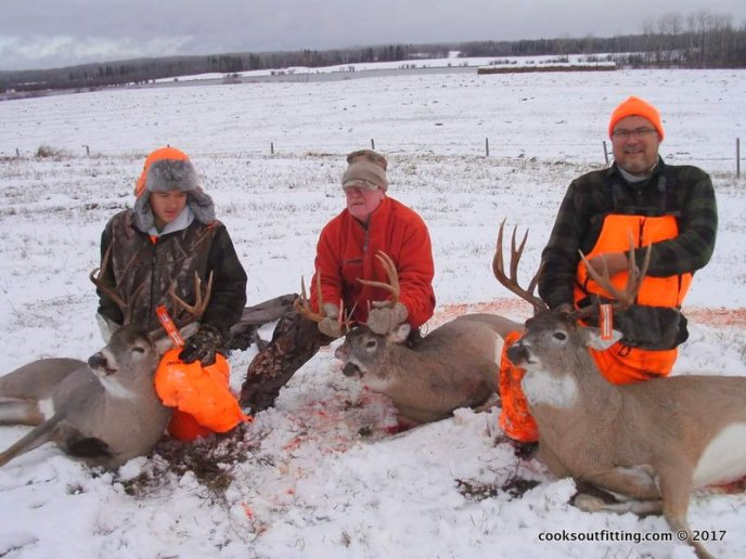 whitetail deer hunt - images