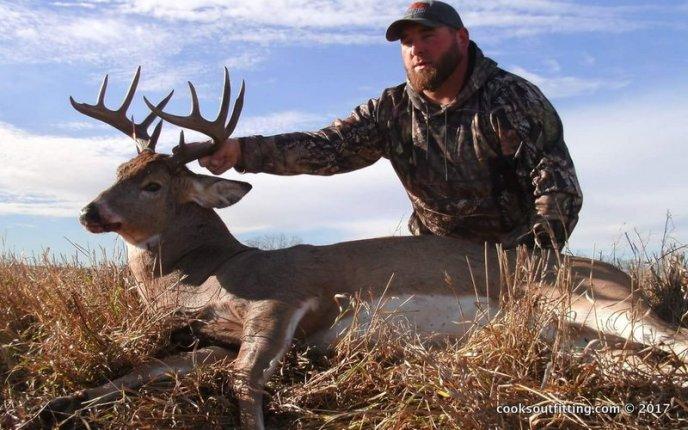 deer hunt - image