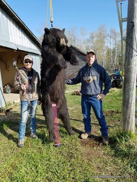 saskatchewan-black-bear-hunting-6