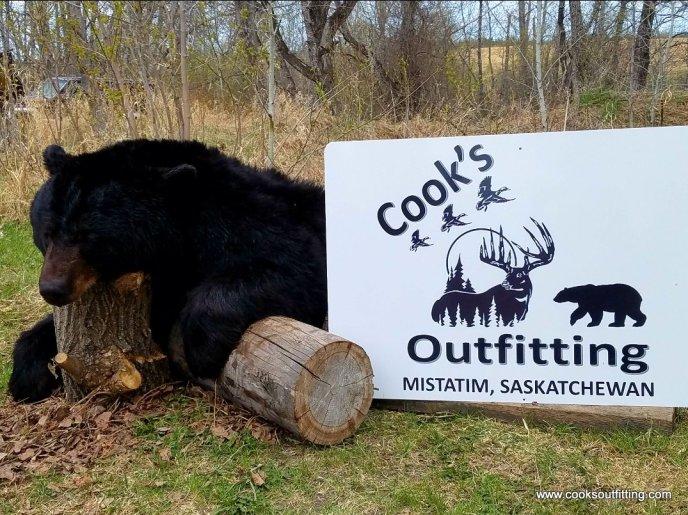 trophy-bear-hunts-canada
