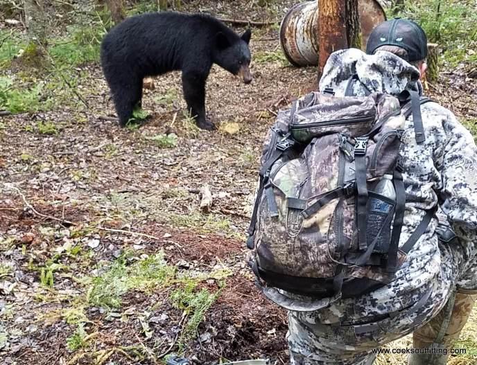 bear and hunter - image