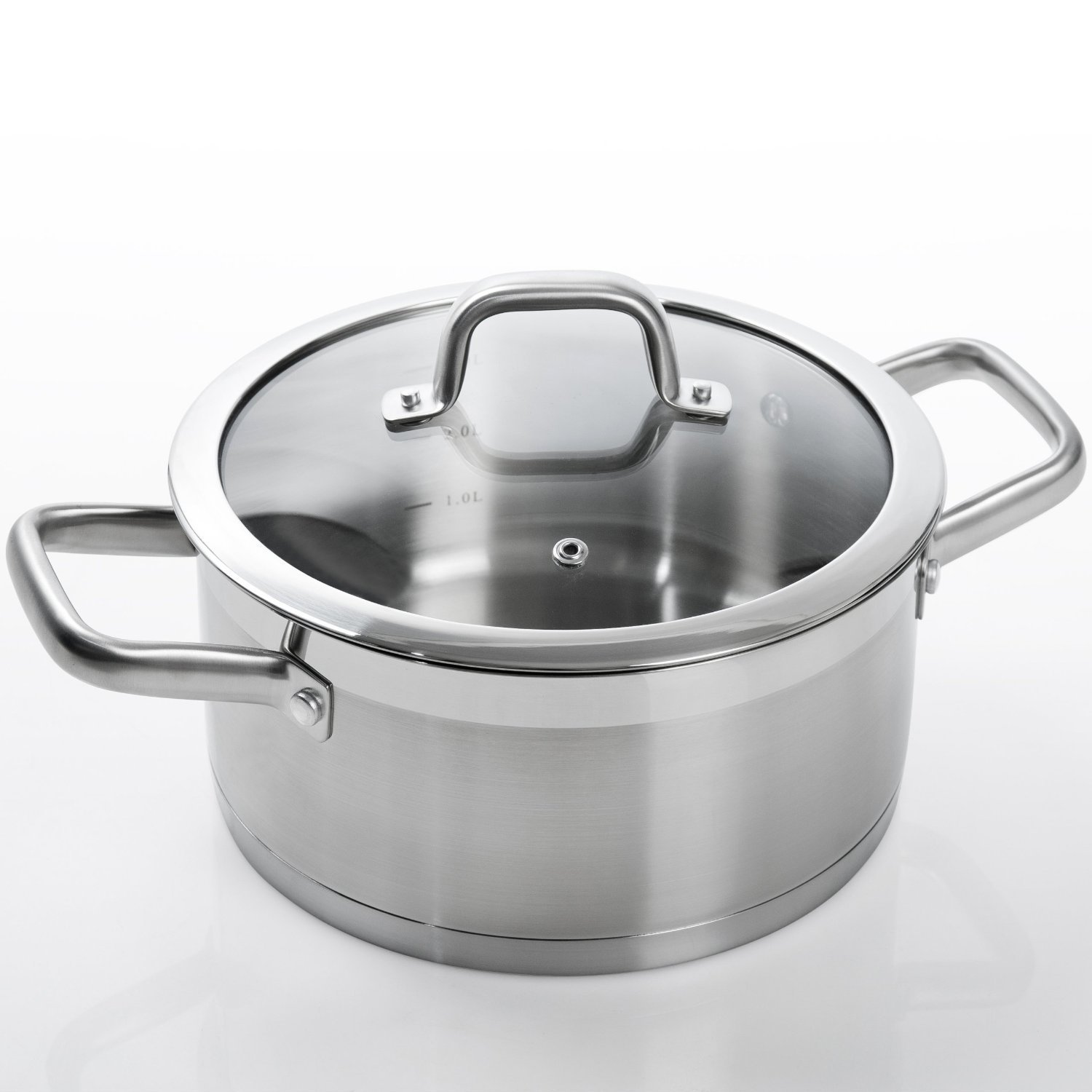 Duxtop SSIB-17 pot with lid