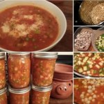 Instant Pot Vegetable Soup with Garbanzo Beans