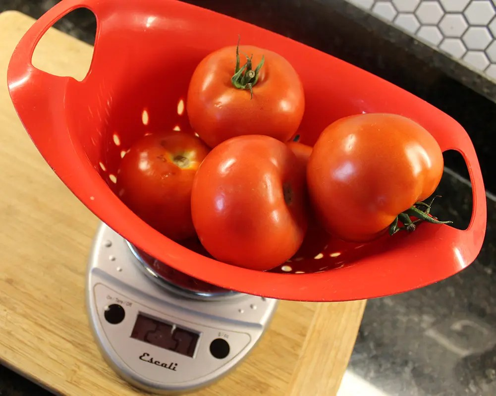 Weighing Tomatoes