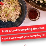 Pork & Leek Dumpling Noodles