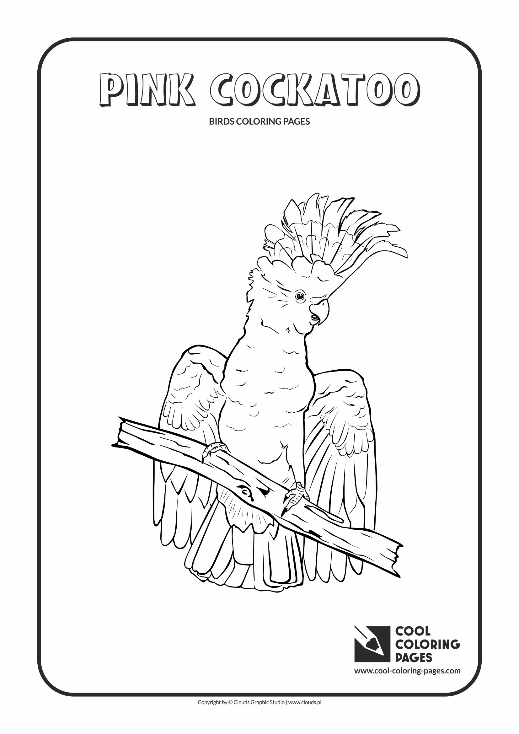 Cool coloring pages birds coloring pages cool coloring, bird coloring pages