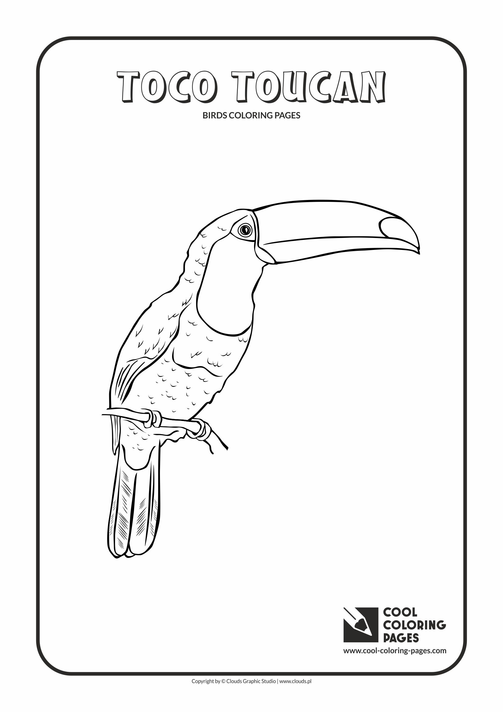 Cool Coloring Pages Birds Coloring Pages