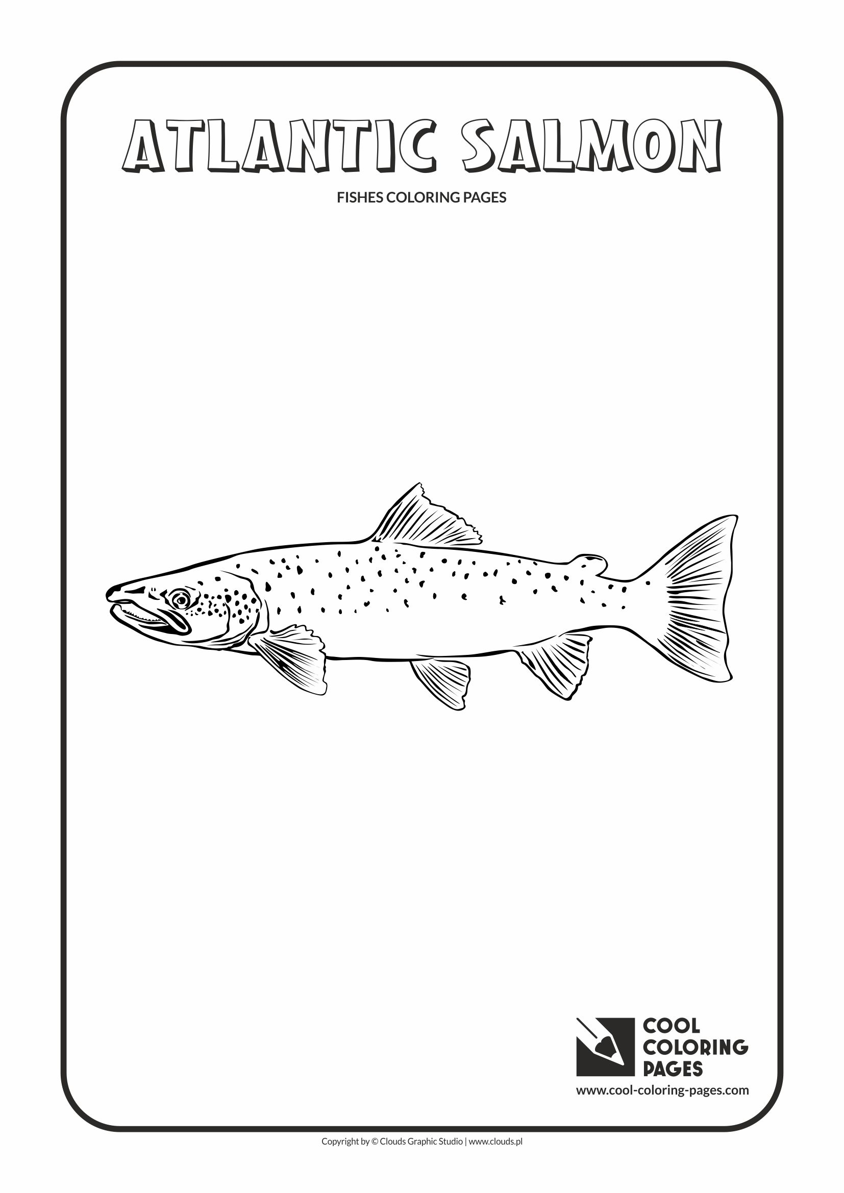 Cool Coloring Pages Animals Coloring Pages Cool Coloring
