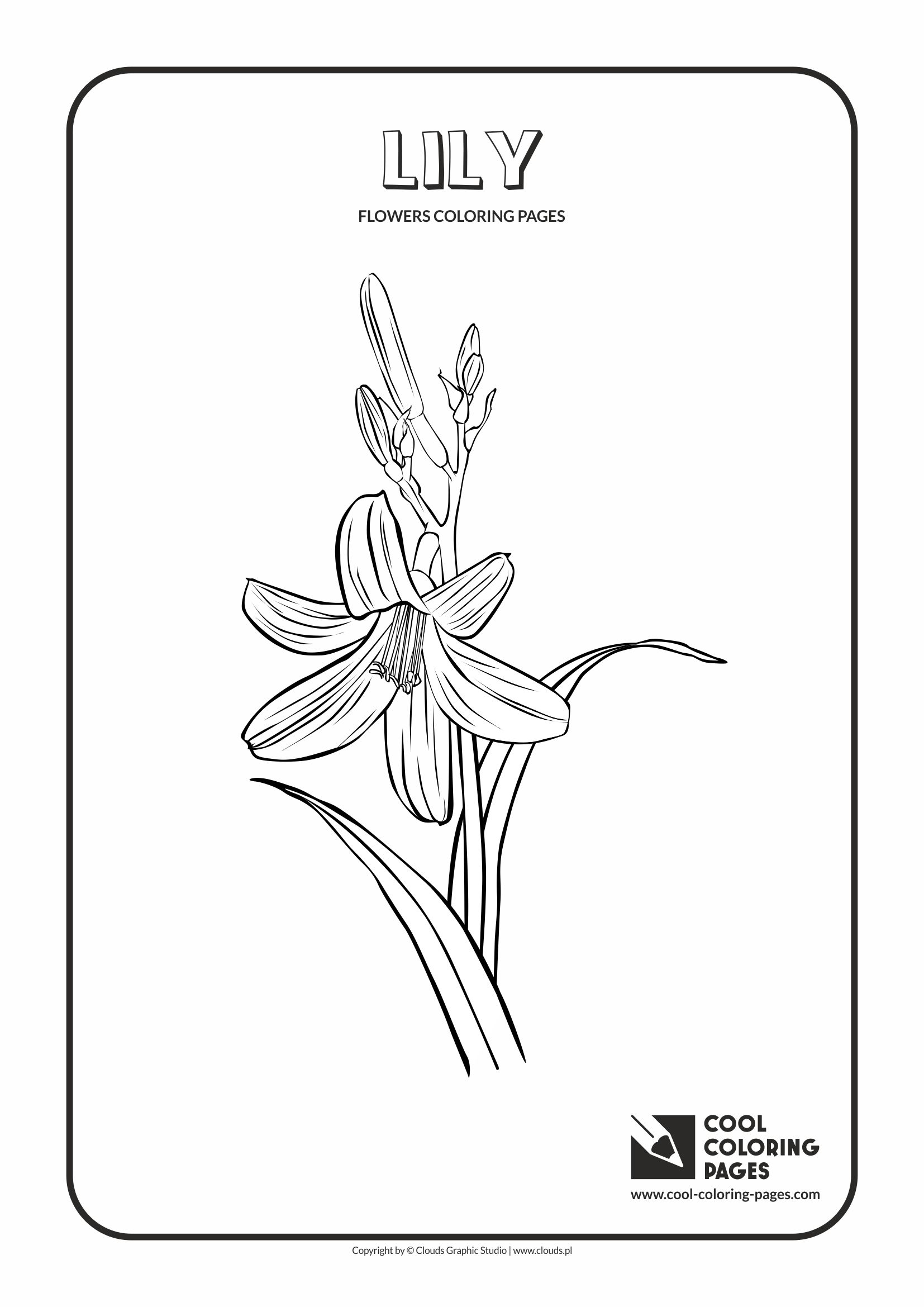 poppy coloring pages