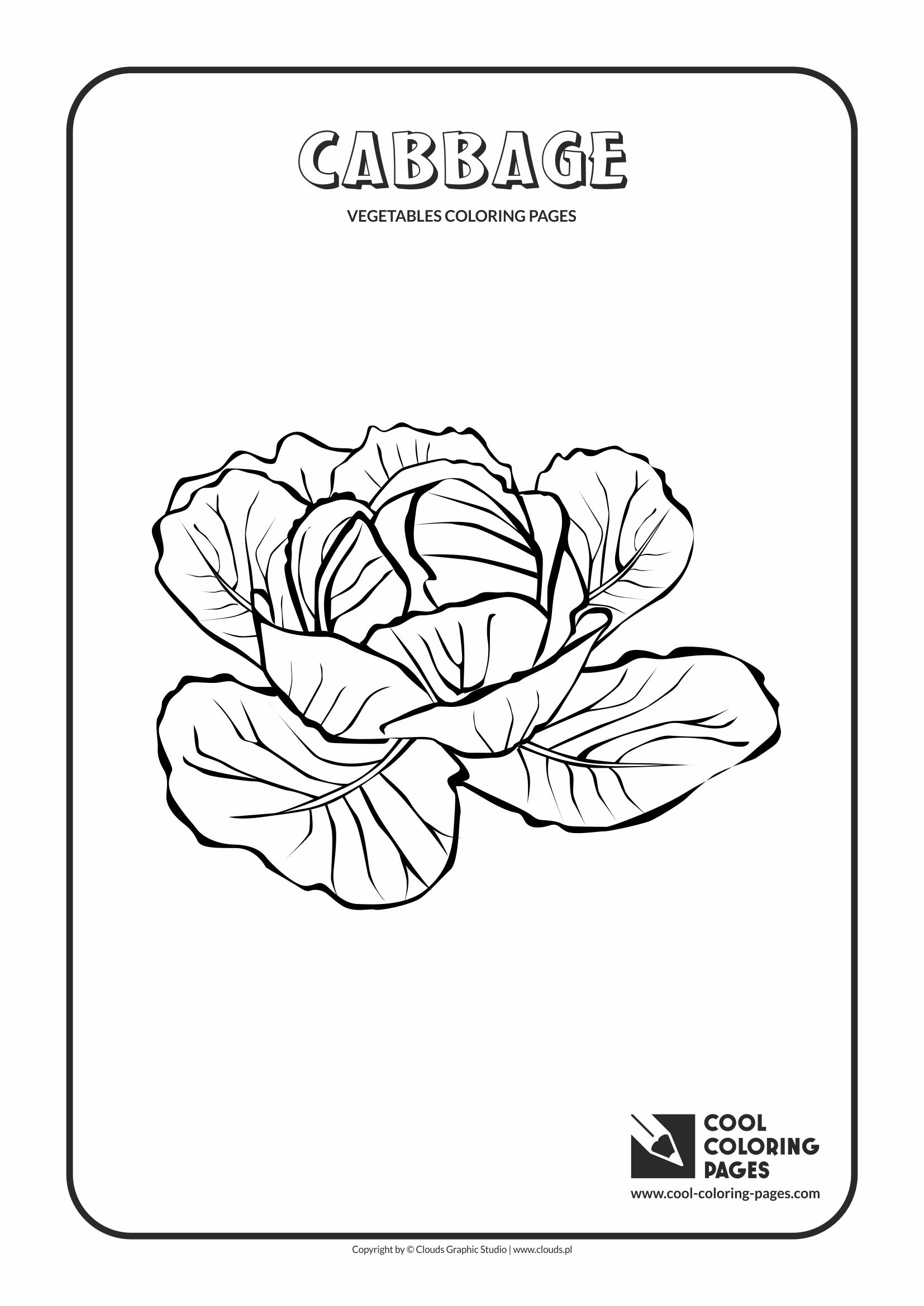Cabbage Coloring Page Cool Coloring Pages