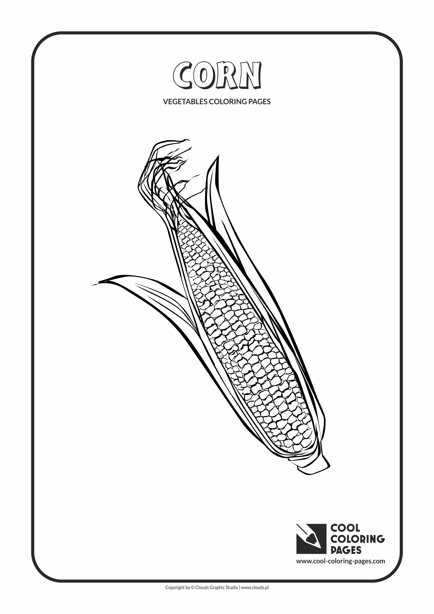 Corn Plant Life Cycle Worksheet Sketch Coloring Page