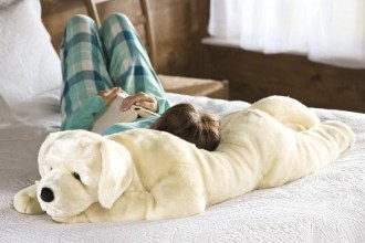OMG! Great Gift for Teens - Super Soft and Huggable Body Pillow
