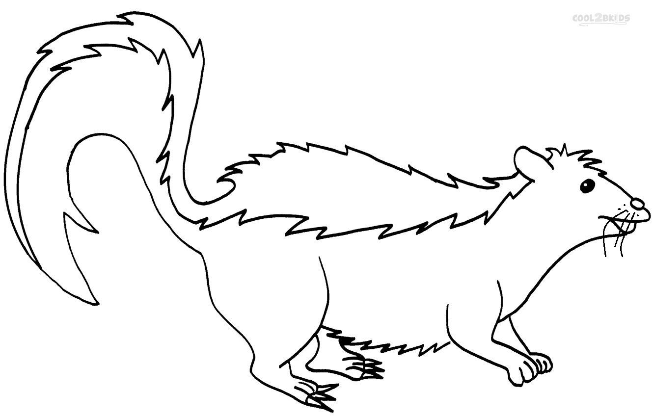 Printable Skunk Coloring Pages For Kids