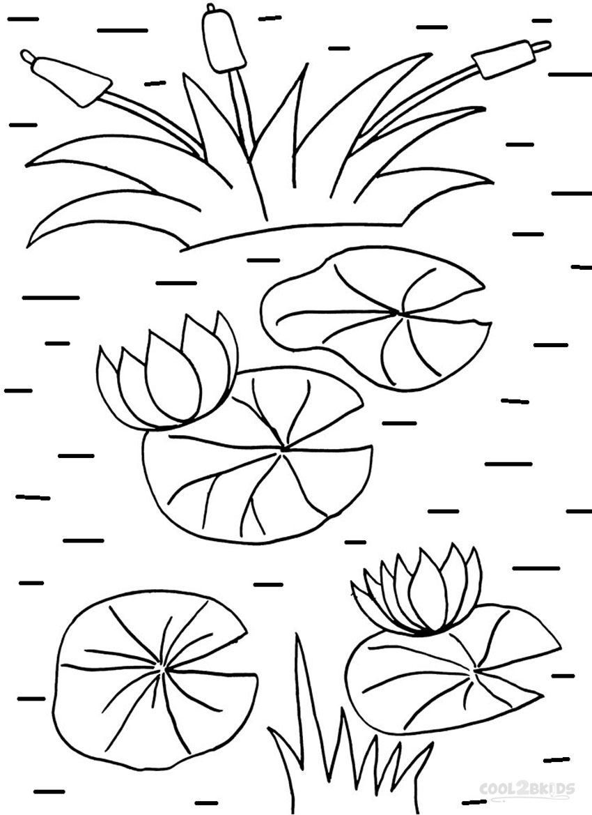 Printable Lily Pad Coloring Pages For Kids