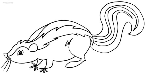 skunk coloring pages # 1