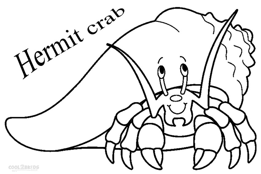 Hermit Crab Template