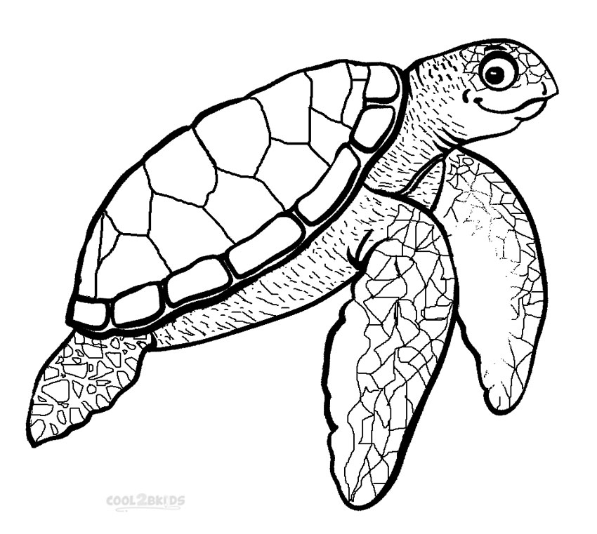 Sea Plants Coloring Coloring Pages