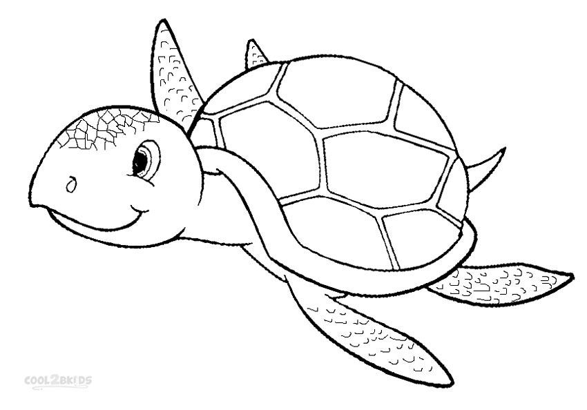 Luscious Sea Turtle Coloring Pages Leslie Website