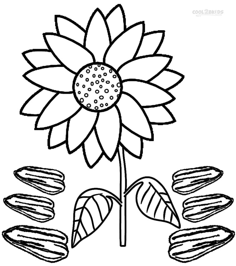 Free coloring pages of parts of a tree labeled