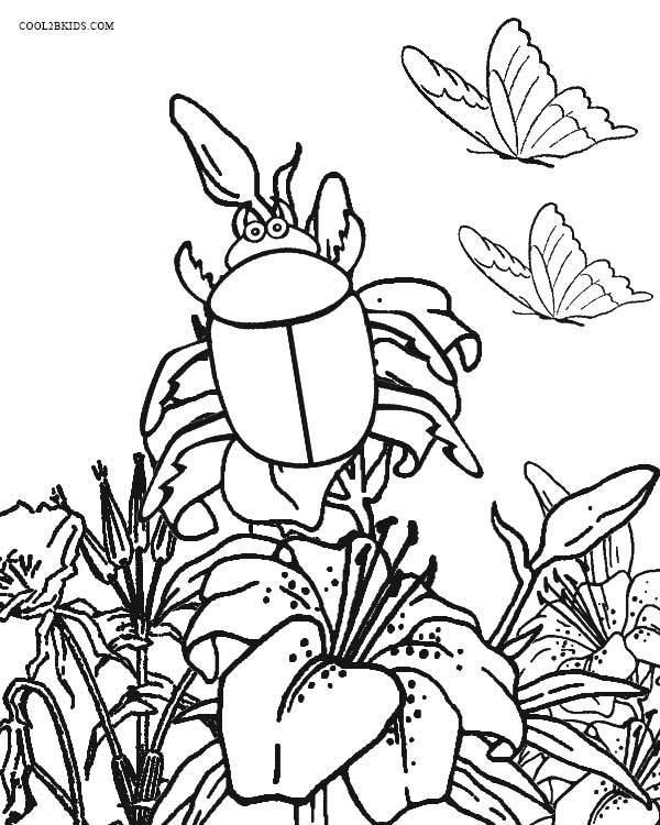 bug coloring page # 33
